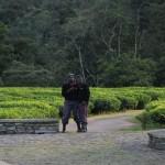 nyungwe-forest-lodge-35