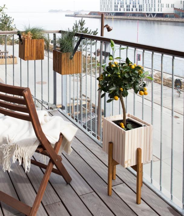 terasa balkon biljke