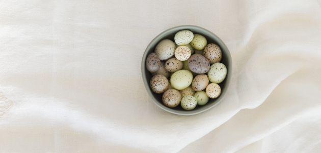 prepelicija jaja zdrava hrana