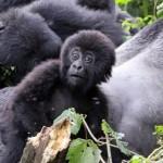 ruanda-mjesta