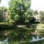 botanicki-vrt-zagreb-013