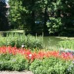 botanicki-vrt-zagreb-014