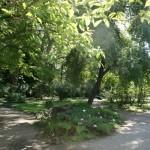 botanicki-vrt-zagreb-06