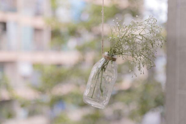 biljka recikliranje reciklaža staklo staklenke