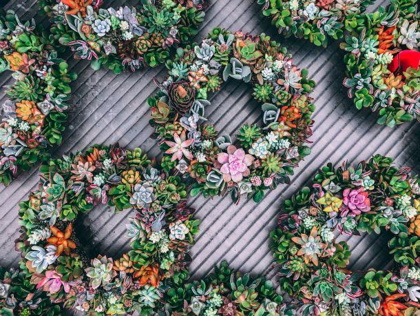 dekoracija vjenčići cvijeće