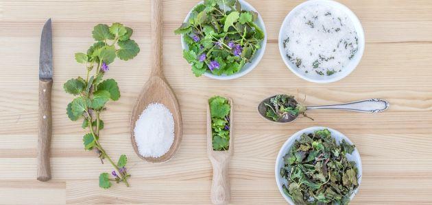 začini bilje u kuhinji vrt