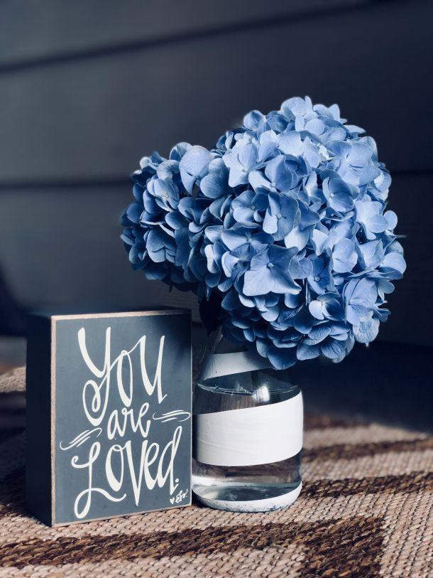 cvijece Hydrangea otrovna hortenzija