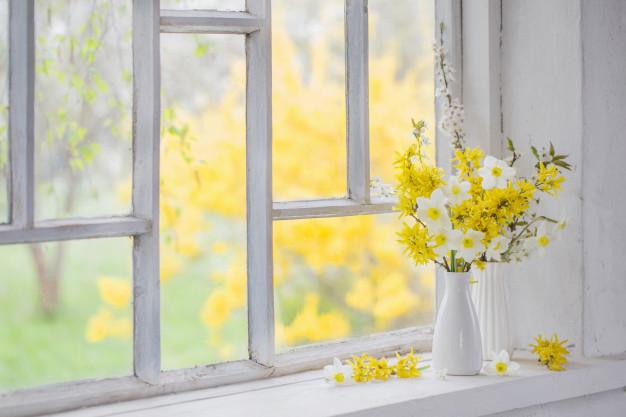 narcise uskrsno cvijece otrovan narcis