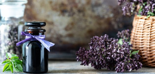 Tako lijepe a tako otrovne – biljke i cvijeće koje privlače mirisom i ljepotom