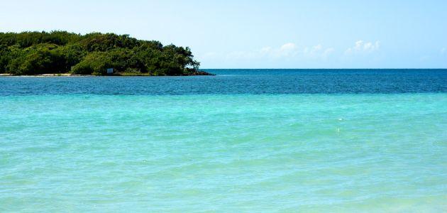 Otok Vieques