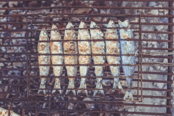 riba na gradele