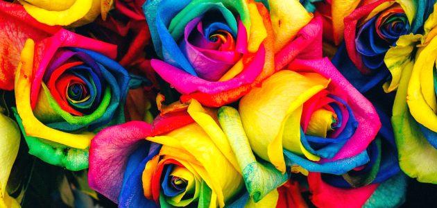 Učinkovita terapija bojama