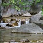 Paklenica potok