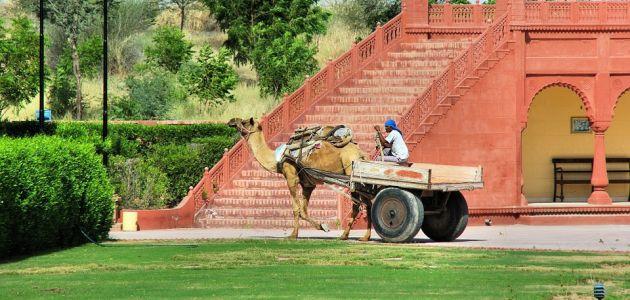 Rajasthan ili kako je zovu Zemlja kraljeva