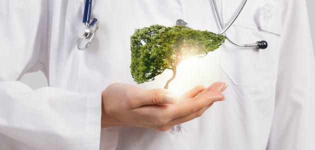 Jetra i o bolestima jetre govori prof.dr.sc. Boris Vucelić