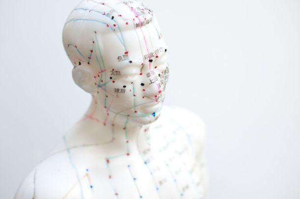 Akupunktura priroda