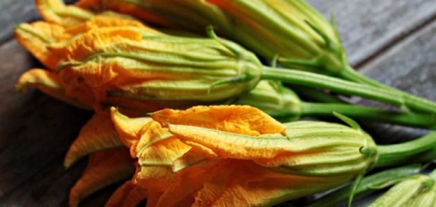 cvjetovi-bundeve