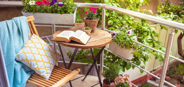 Odaberite zimske biljke za vrt i dom