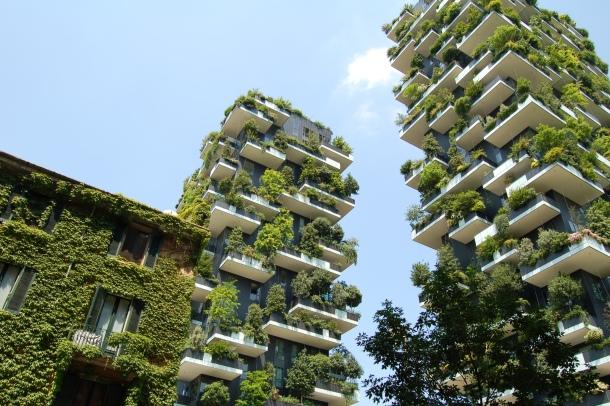 zelenilo balkon