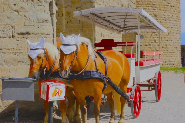 francuska vožnja kočijom carcassonne