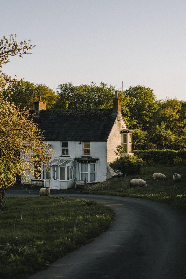 horsham engleska