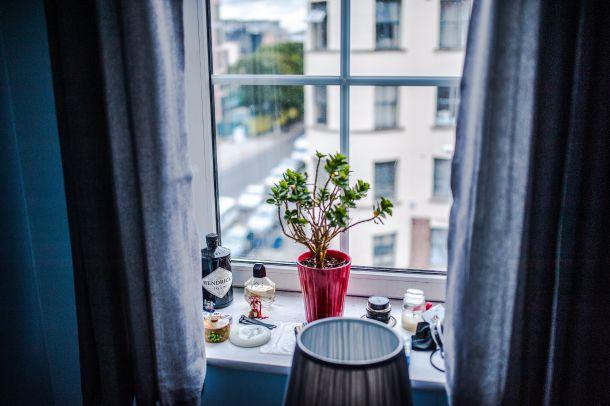 atmosfera interijer prozor cvijeće ideja