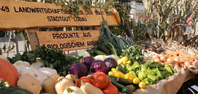 Poljoprivredna proizvodnja u Beču: od smokava i čilija do mangulica