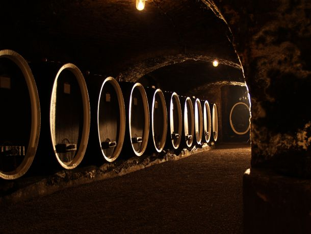 vinski-podrum-kutjevo