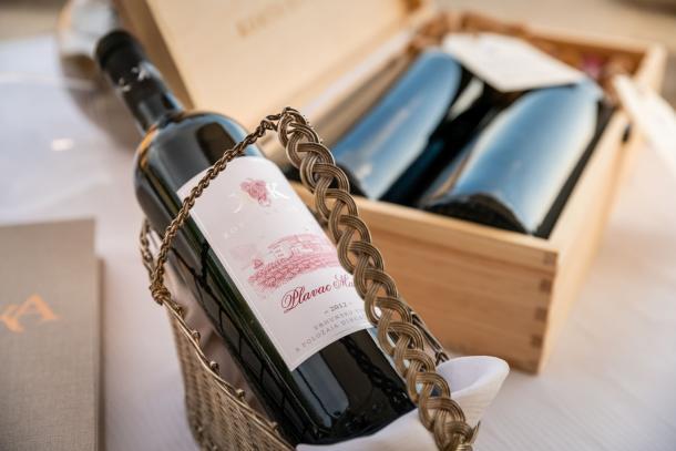 vinarija-korta-katarina-1
