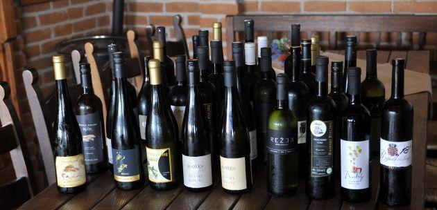 1.Summer Riesling Tasting_Plešivica (8)_uzorci vina