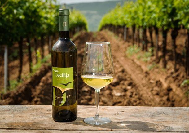 cecilija vino
