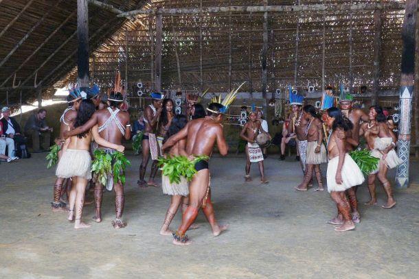 amazona ples