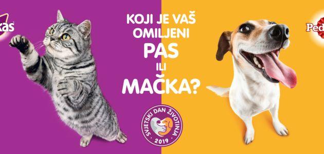 Pas ili mačka – koji je vaš omiljeni ljubimac?