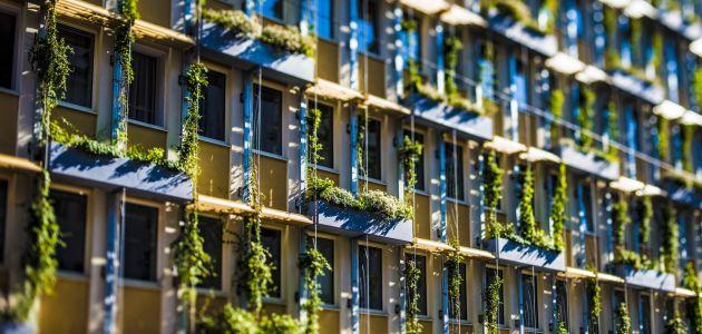 bec-zelena-fasada