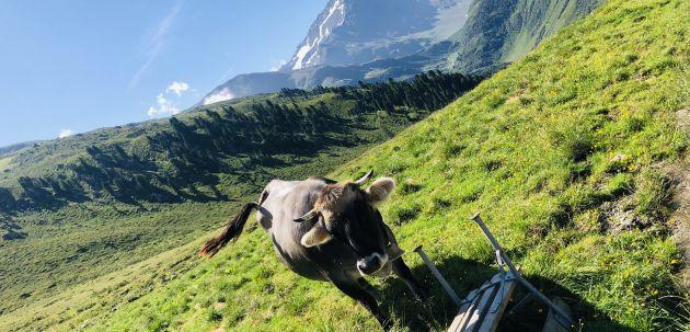 Tirolsko mjesto Sant Anton bajkovito je mjesto podno Alpa