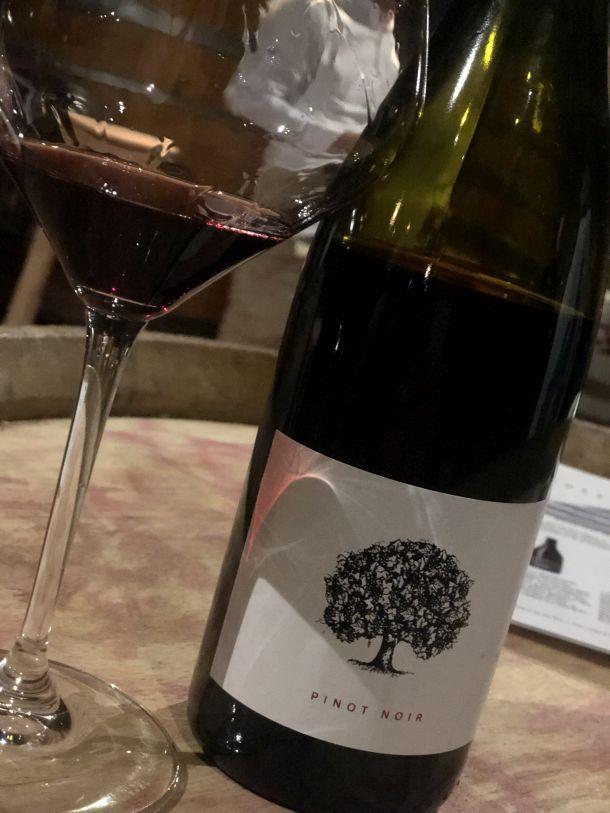 pinot noir tilia estate vinarija