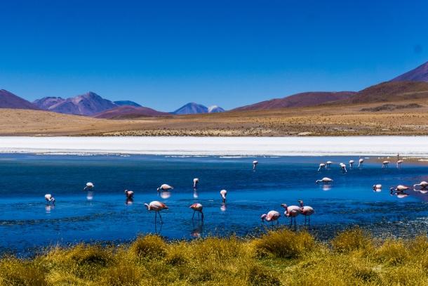 Salar de Uyuni  bolivija amerika