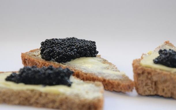 beluga kavijar caviar