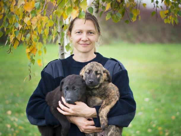 koronavirus i psi Marija Ferenček sa štencima