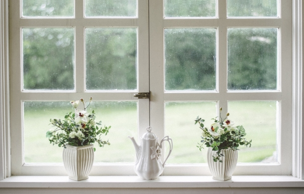 prozor cvijece stan kuca