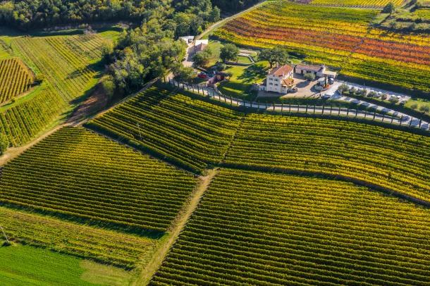 vinarija Kabola Winery