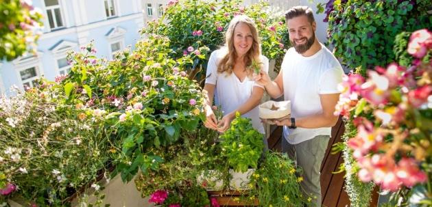 Balkoni u cvatu