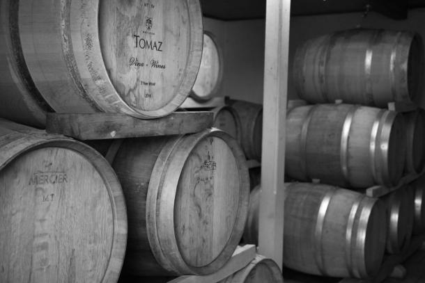 Podrum vinarija tomaz