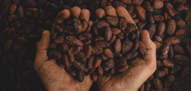 kakao kakaovac cokolada