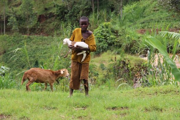foto diana miklos selo ruanda