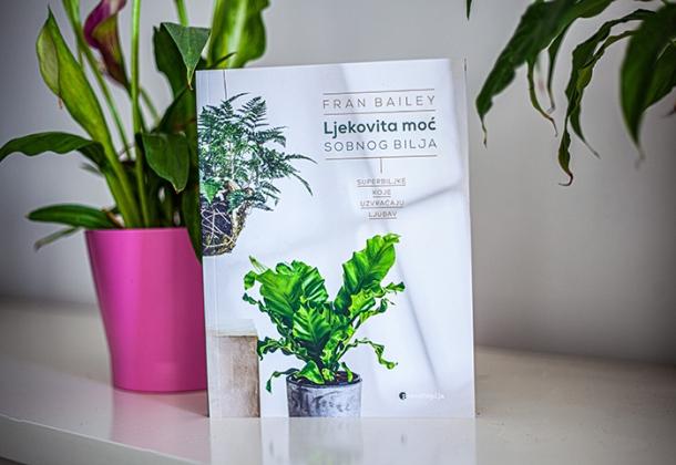 biljke koje uzvracaju ljubav sobne biljke