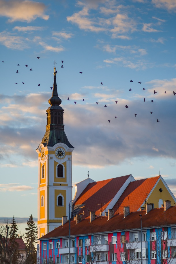Crkva Sv. Roka, Virovitica - autor Matija Turkalj