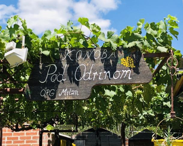 opg ivica milan vrhunski posip bijelo vino