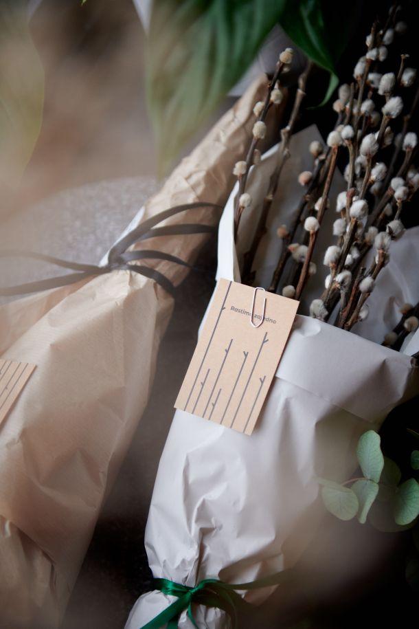 dardin hotel za biljke u zagrebu dezaliceva ulica
