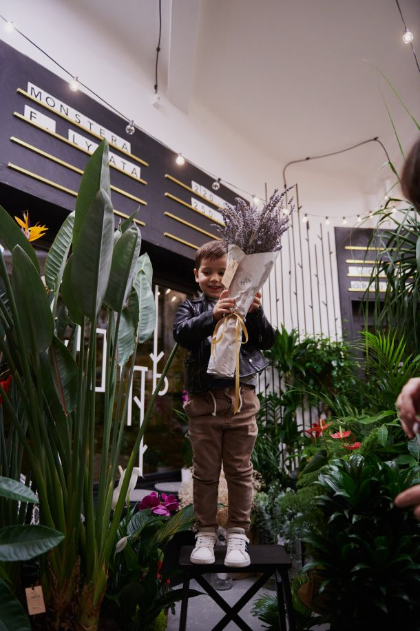 dardin je prvi hotel za biljke u zagrebu